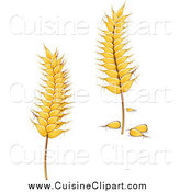 Cuisine Clipart of Golden Grains by Vector Tradition SM