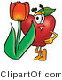 Cuisine Clipart of a Smiling Red Apple Character Mascot with a Red Tulip Flower in the Springtime by Toons4Biz